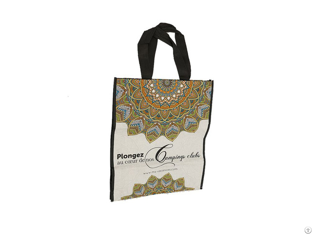 Luxury Woven Pp Shopping Tote Bag