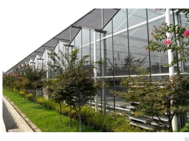 Glass Greenhouse Bz Gg 1401