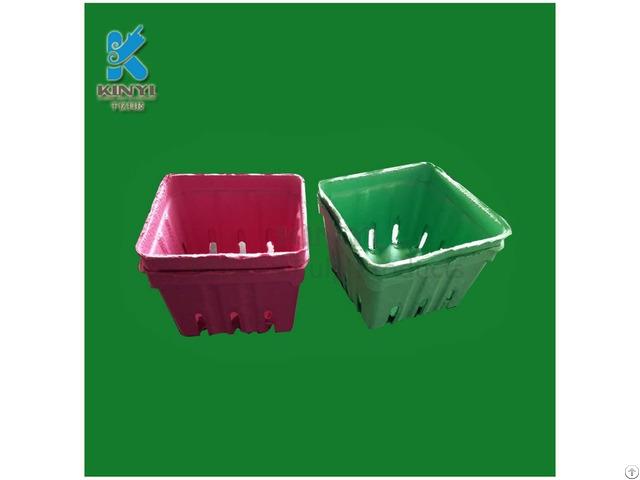 Food Grade Fruit And Veggie Platters
