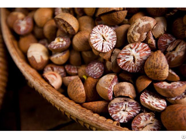 Top Quality Betel Nut From Vietnam