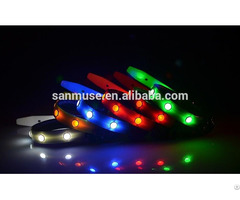 Hot Selling Fashion Christmas Flashing Led Dog Collar