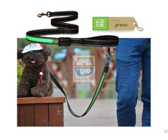 Hot Sale New Pet Products Solar Usb Led Collar Leash