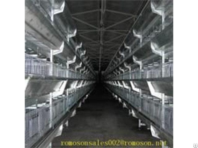 Poultry House Shandong Tobetter Modern Design