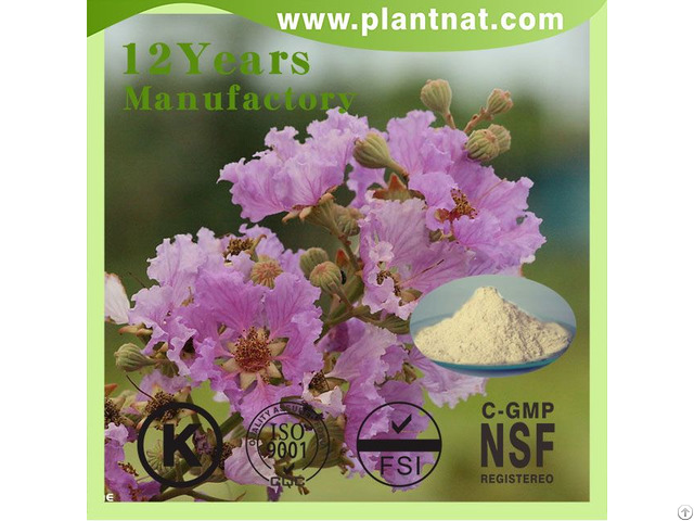 Banaba Leaf Pe Corosolic Acid