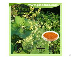Macleaya Cordata Extract 60% Alkaloids Sanguinarine Feed Additive
