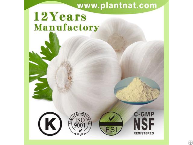 1% 2% 3% Allicin Garlic Powder