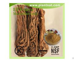 Angelica Extract Ligustilide 1%