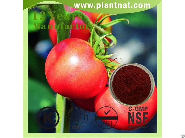 Tomato Extract Lycopersicon