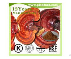 Ganoderma Lucidum Extract Polysaccharides