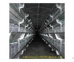 Poultry Cages Shandong Tobetter Style Complete