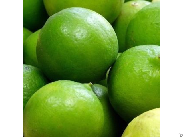 Fresh Whole Dried Sliced Lime