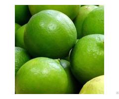 Fresh Whole Dried Sliced Lime