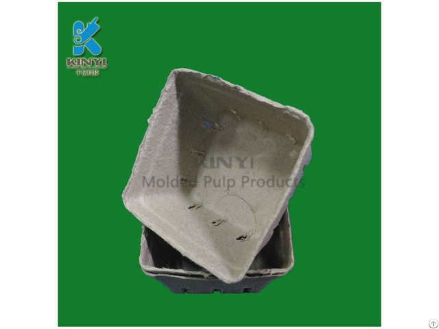 Disposable Paper Pulp Molded Fruit Packaging Box Container
