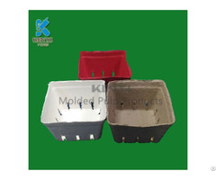 Biodegradable Mold Pulp Frozen Fruit Basket