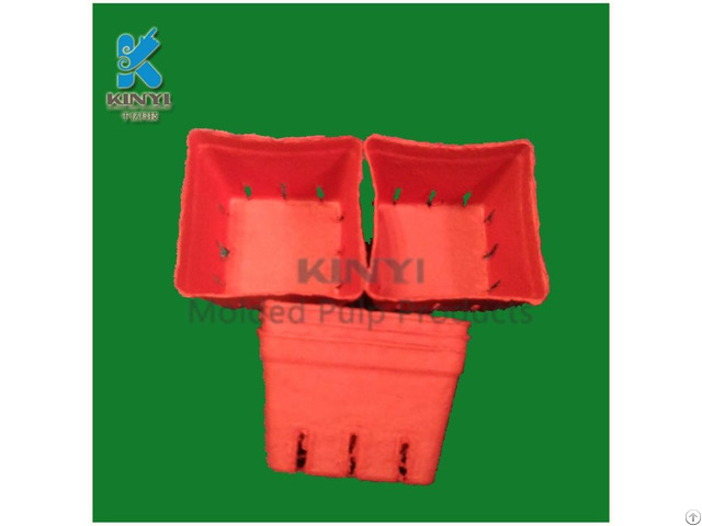 Biodegradable Recycled Tomato Packaging Basket