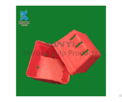 Biodegradable Mold Pulp Apple Packaging Baskets