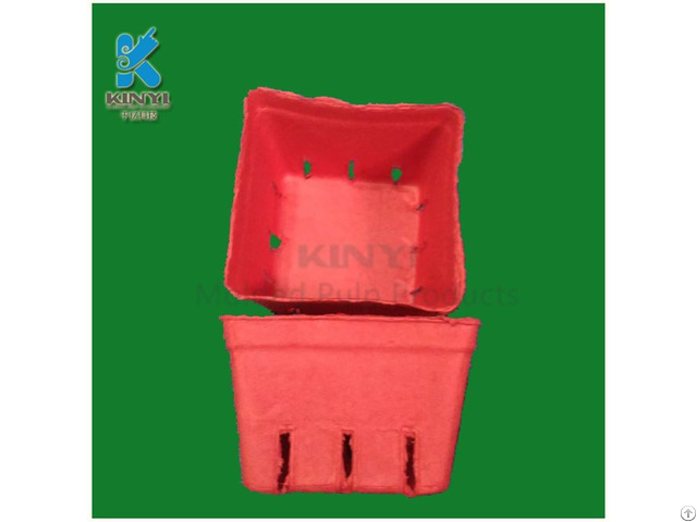 Disposable Pulp Molded Vegetable Basket