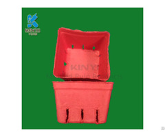 Disposable Pulp Molded Vegetable Basket
