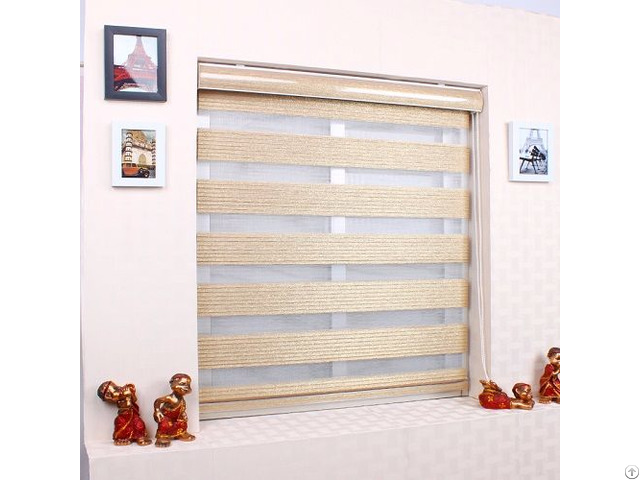 Pleated Zebra Blinds