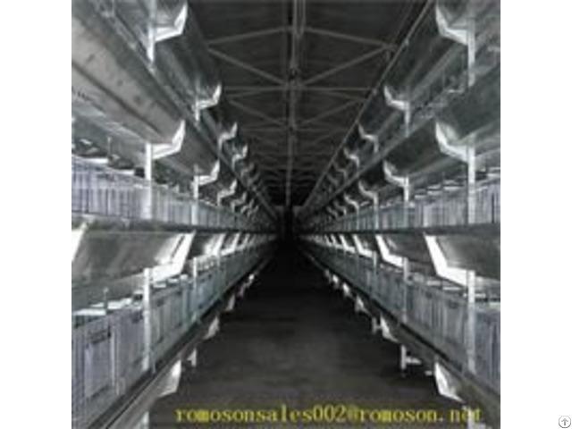 Broiler Equipment Shandong Tobetter Corrosion Resistant Long Life