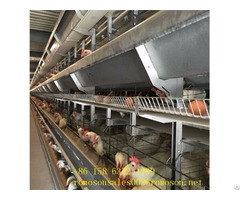 Chicken Raising Equipment Shandong Tobetter Fully Equipped