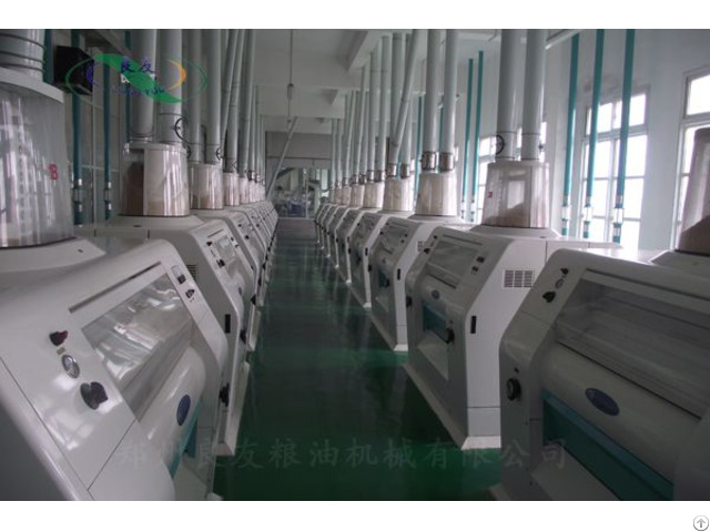 300t 24h Floor Type Wheat Flour Production Line