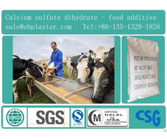 Fillers Feed Additives
