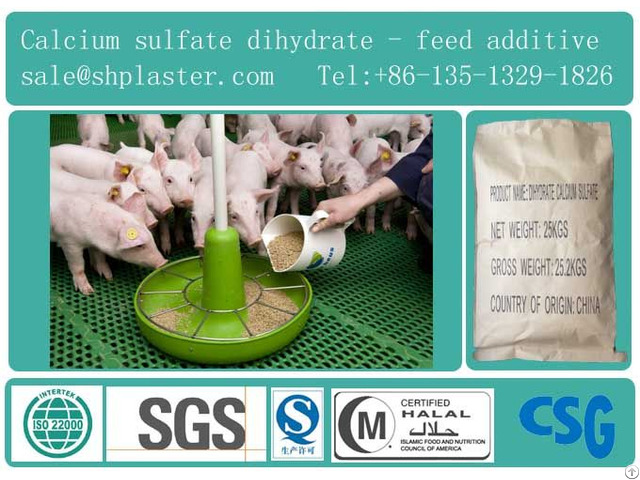 Feed Grade Dihydrate Calcium Sulfate Ap98