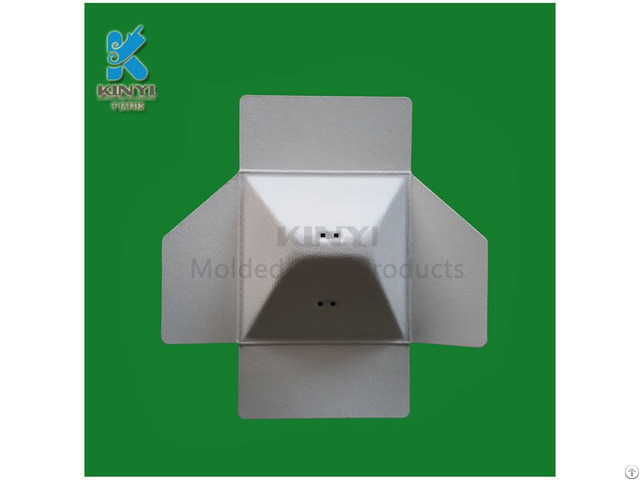 Biodegradable Paper Molded Pulp Packaging Customized
