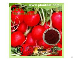 Red Beet Powder