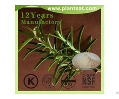 Rosemary Extract Acid