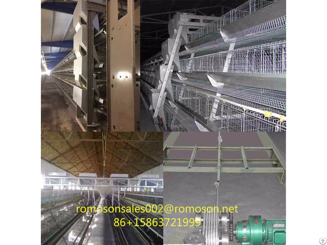 Poultry Supplies And Equipment Shandong Tobetter All Kinds