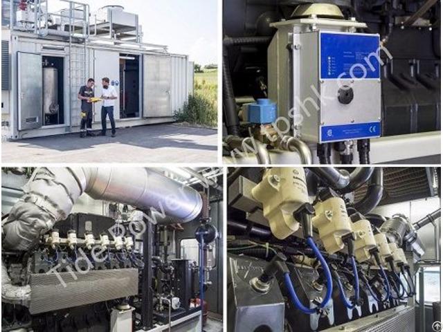 Liebherr Biogas Genset