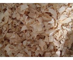 Wood Shavings Good Price
