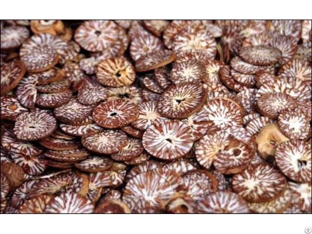 Betel Nut Supplier