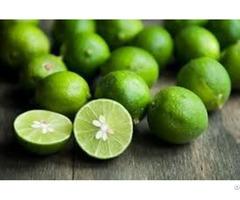 Fresh Lemon Supplier