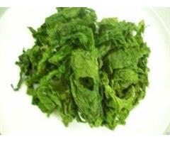 Green Seaweed Raw