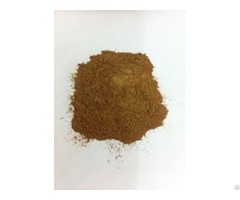 Litseaglutinosa Powder