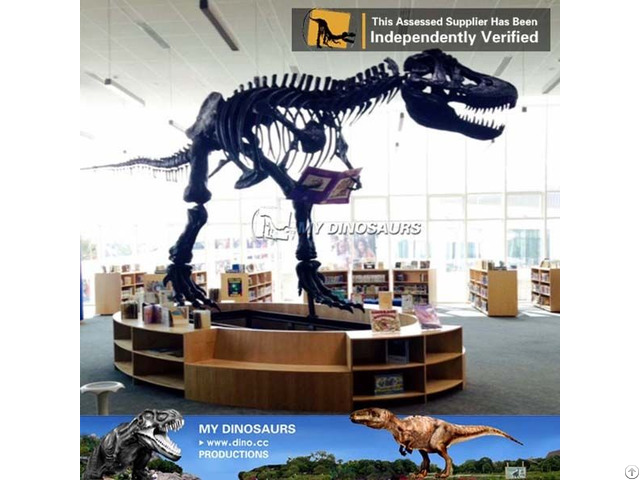 My Dino Full Size T Rex Skeleton Replica