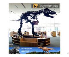 My Dino Full Size T Rex Skeleton Replica