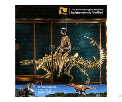 My Dino Golden Dinosaur Skeleton