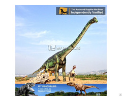 My Dino Frp Products Brachisaurus