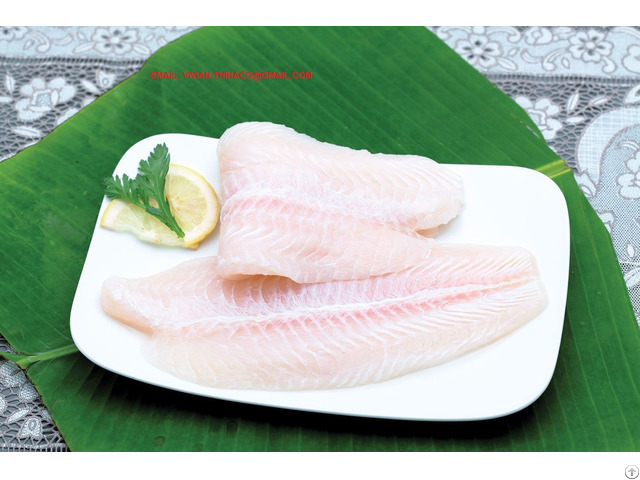 Offer Vietnam Pangasius Basa Fillet
