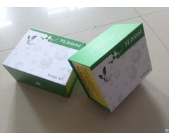 Human Soluble Platelet Selectin Elisa Kit