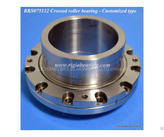 Brs075132 Non Standard Slewing Ring Bearing