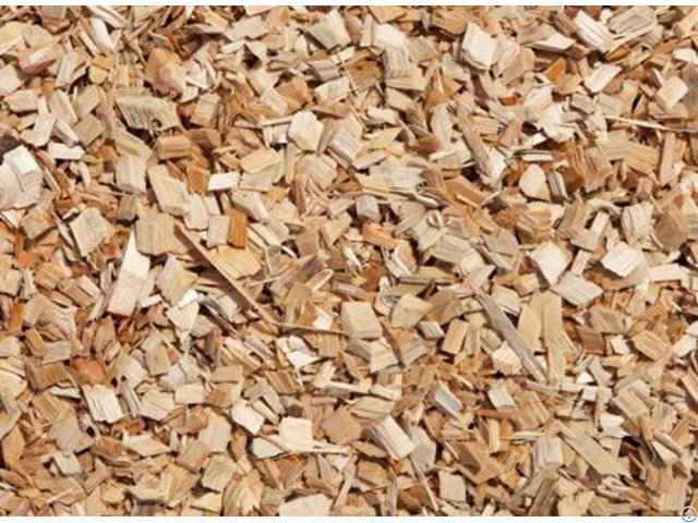 Rubber Wood Chips Vietnam For Power Plant Fuel Boiler