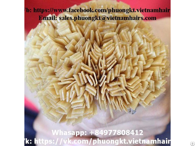 Flat Tip Blonde Best Price And Quality Straight Vietnamese Remy Hair 60cm