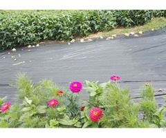Weed Control Fabric Hot Sale For Gardening