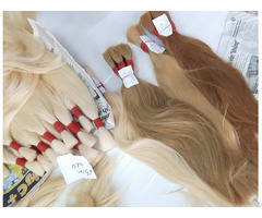 Human Hair Full Color Best Wholesale Price