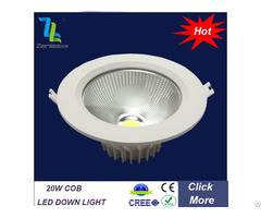 Zenlea 20w Cob Ceiling Light